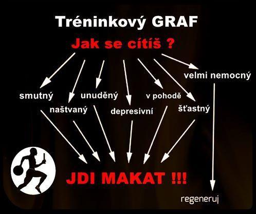 Tréninkový graf