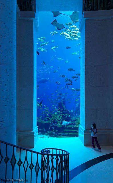 Aquarium. Underwater palace.