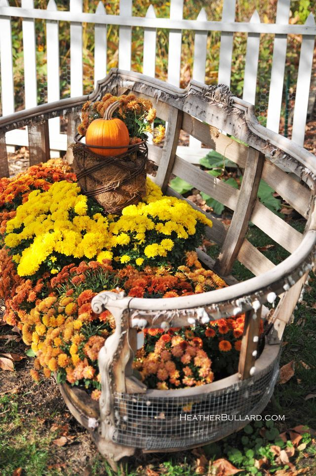 love the colors of those chrysanthemums: Ideas, Old Furniture, Benches, Fall Decor, Autumn, Gardens, Planters, Flower Beds, Fall Flower