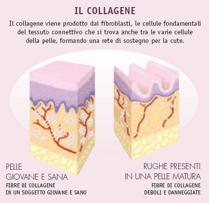 Il #Collagene, sostegno naturale della nostra #pelle   http://www.skinception.it/kollagen-intensiv.html