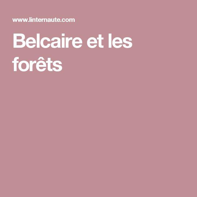 Belcaire et les forêts