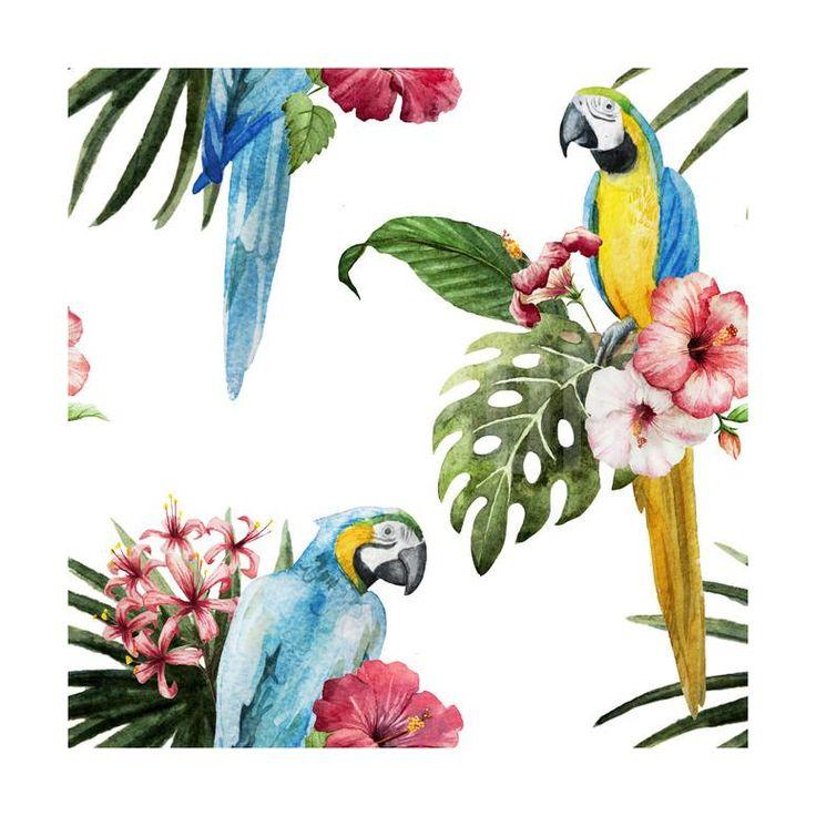 18 besten птицы Bilder auf Pinterest | Vögel kunst, Gerahmte ...