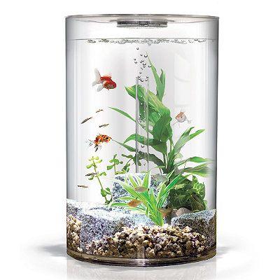 BiUbe Pure Aquarium - Frontgate