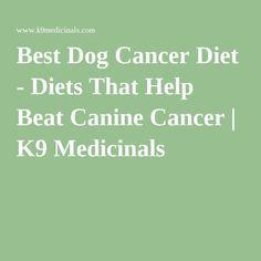 Best Dog Cancer Diet - Diets That Help Beat Canine Cancer | K9 Medicinals