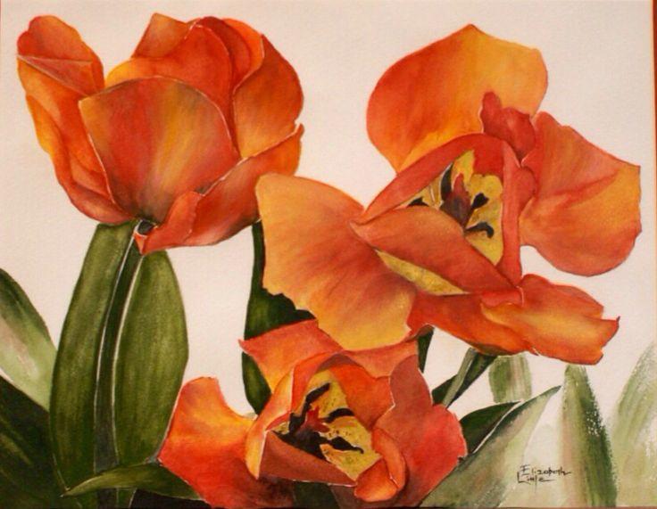 Tulips 'A Glow, Watercolour by Elizabeth Little