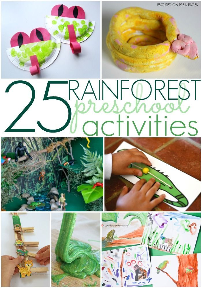 Rainforest Activities for Preschoolers - Pre-K Pages. A collection of the 25 best preschool activities for a rainforest theme in your preschool or kindergarten classroom!