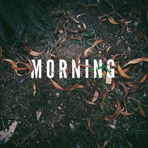 Morning | #typo #leaf #photograph