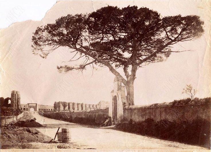 Via Tuscolana (1890 ca)