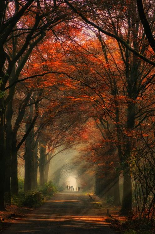 Wonderfull Colours – Diana Gleiche