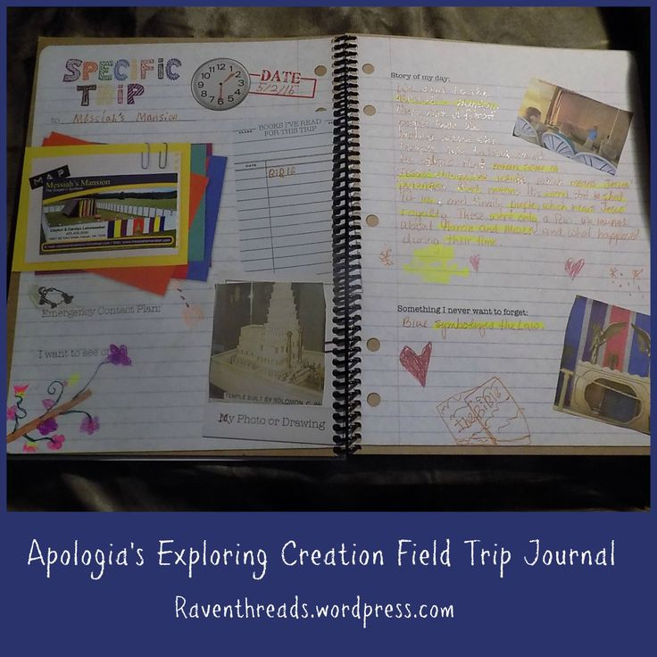 12 best reviews field trip journal images on pinterest trip exploring creation field trip journal a tos review crew review fandeluxe Gallery