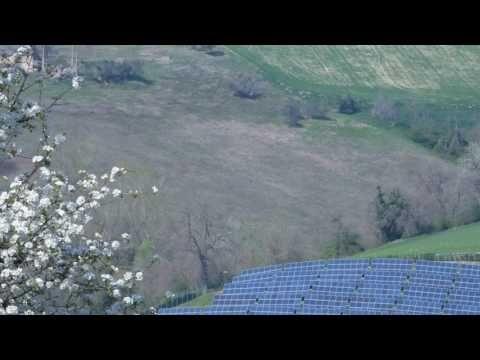 Territorio di Montottone, Pannelli solari a Primavera (manortiz)