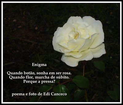 Poema Enigma