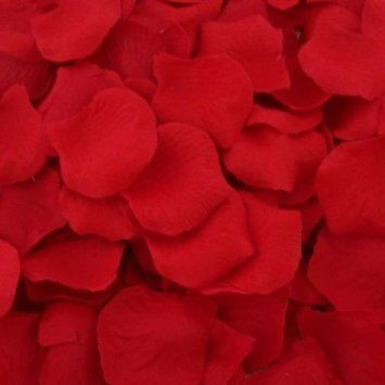 122 best uk wedding decorations images on pinterest birthdays 200 top quality red silk rose petals wedding table confetti decorations amazon junglespirit Choice Image