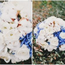 Синие и белые гортензии