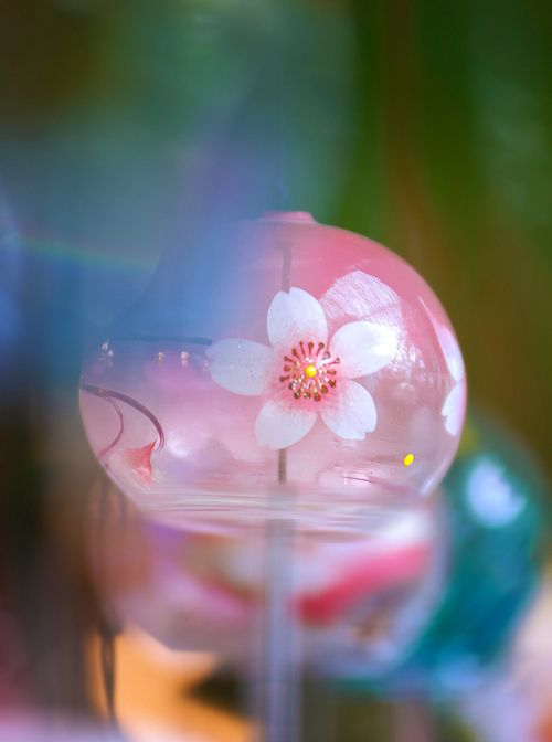 The Japanese Glass Wind Chime, Edo Furin