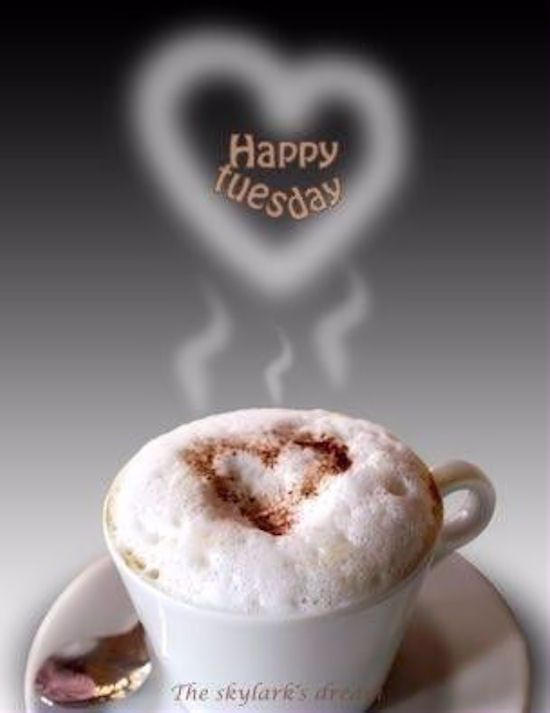 Good Morning Amore Mio : Happy tuesday coffee morning quotes