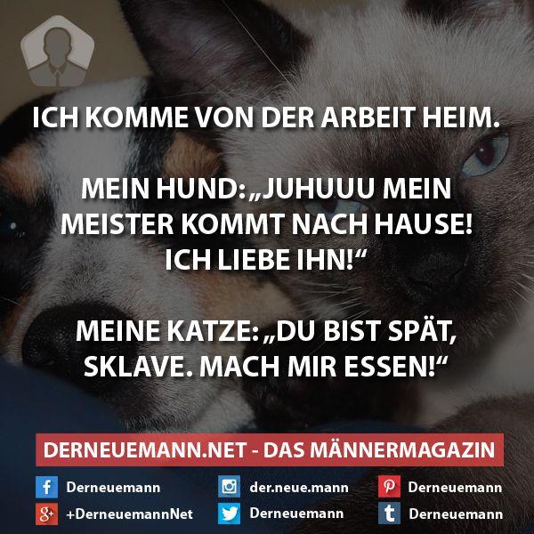 Kenn ich irgenwie....männer und frauen.....hund und katze!!!!