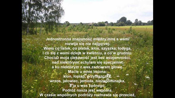 """WISŁAWA SZYMBORSKA """"Milczenie roślin"""" ... - recytuje autorka"""