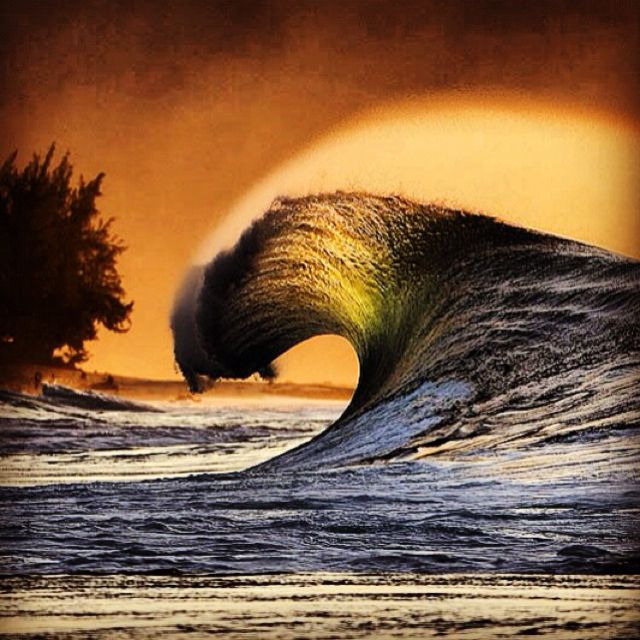 Pipeline - Oahu - Hawaii