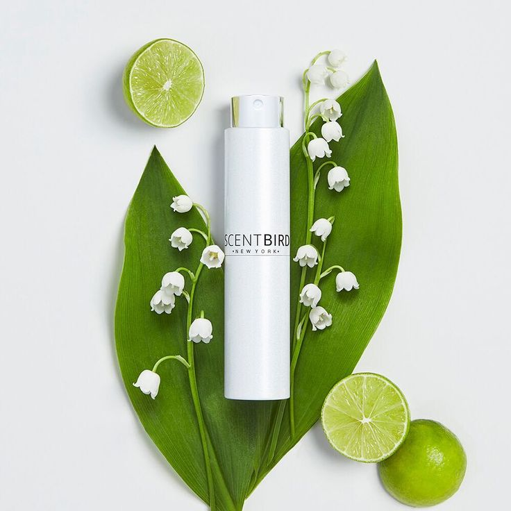 """157 Likes, 5 Comments - Scentbird (@scentbird) on Instagram: """"Iconic freshness with classic green notes, perfect for the last month of summer  #loveatfirstspray…"""""""