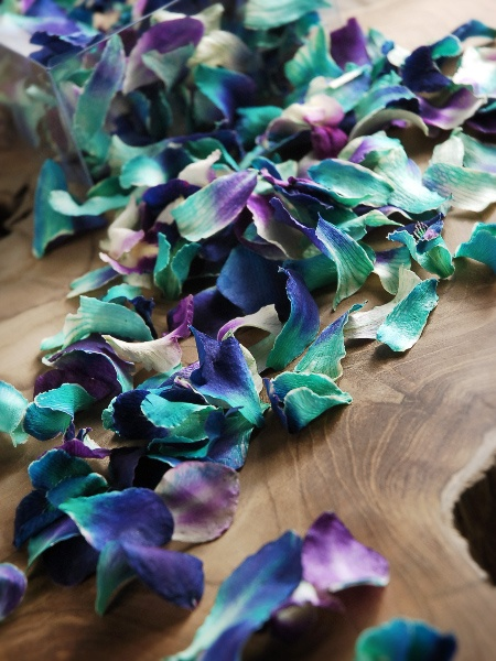 Sonia Blue Preserved Orchid Petals $11 box / 3 boxes for $10 each.. perfect for flower girl petals