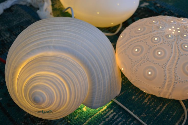 White porcelain lights in shell shap