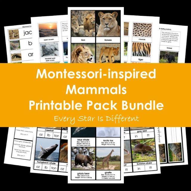 Montessori Inspired Mammals Printable Pack Bundle Mammals Animals Montessori Inspired Mammals Printable Pack Bundle Saugetiere Insekten Tiere