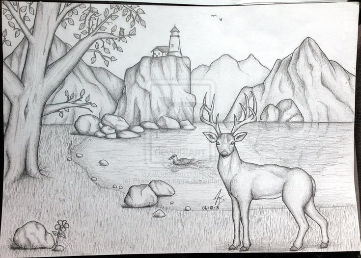How To Draw Landscape Scenery