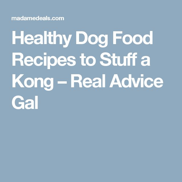 Healthy Dog Food Recipes to Stuff a Kong – Real Advice Gal