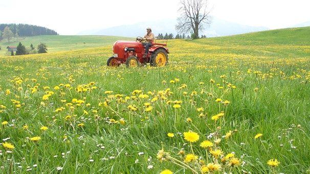 th-traktorwandern100