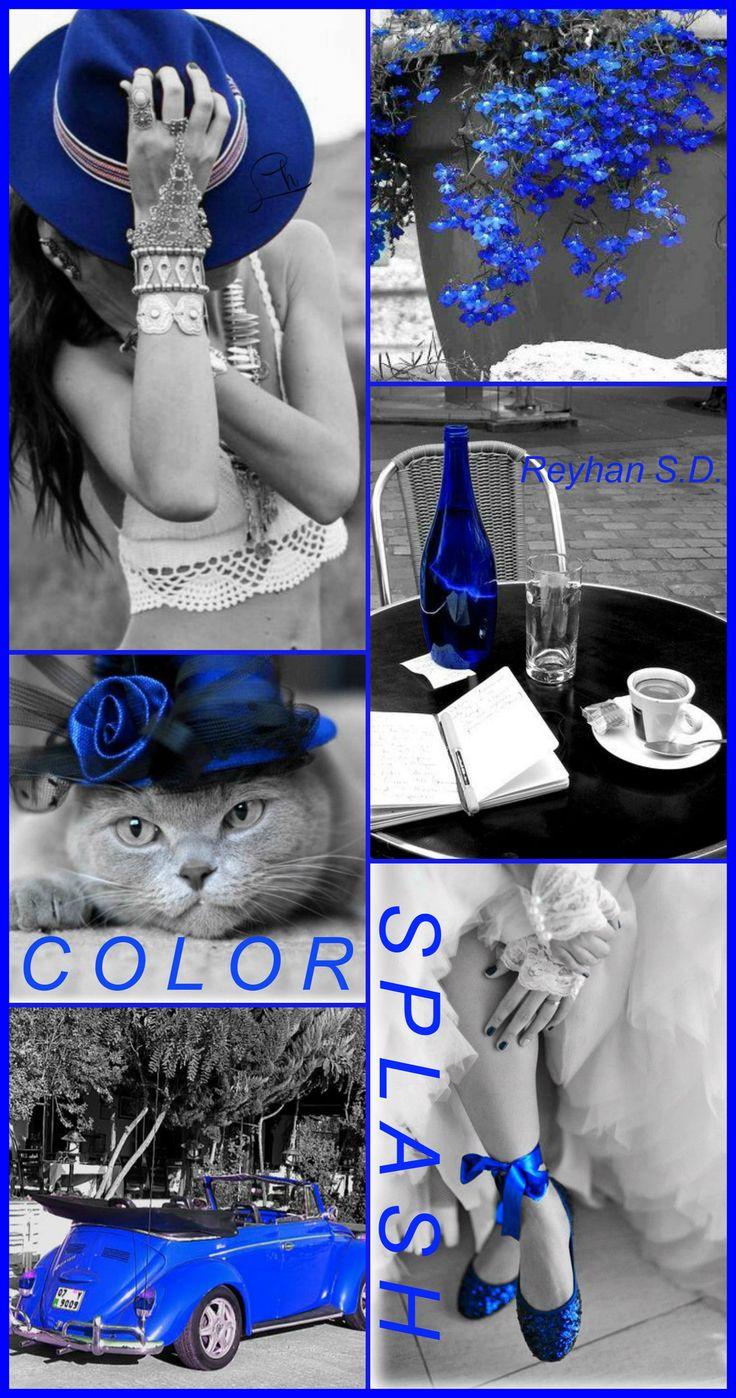 '' Color Splash- Blue '' by Reyhan S.D.
