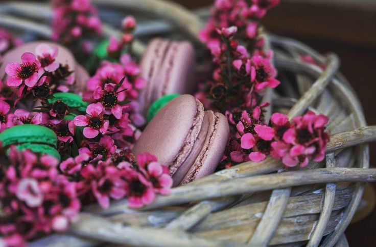 Boysenberry and mint macarons nestled in gorgeous Manuka flowers.