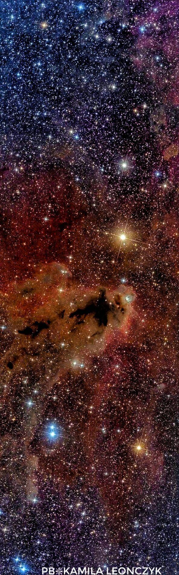 Dark Nebula LDN 1622 and Barnard's Loop Credit & Copyright: Leonardo Julio (Astronomia Pampeana)