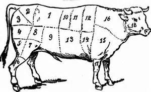 Butchering Cow Cuts - Saferbrowser Yahoo Image Search Results