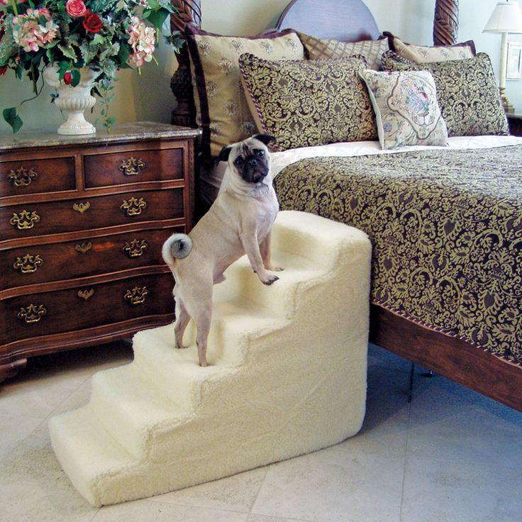 29 best escada akamaru images on pinterest   doggies, dog stairs