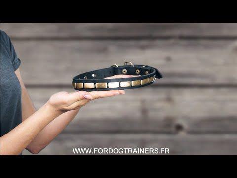 #collier de luxe pour #chien en cuir pleine fleur de 25 mm de large, orné de plaques rectangulaires en laiton ->  21,70 €