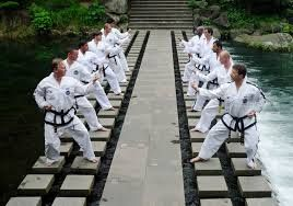 MACAM - MACAM SENI BELA DIRI: Istilah - Istilah Dalam Seni Beladiri Taekwondo