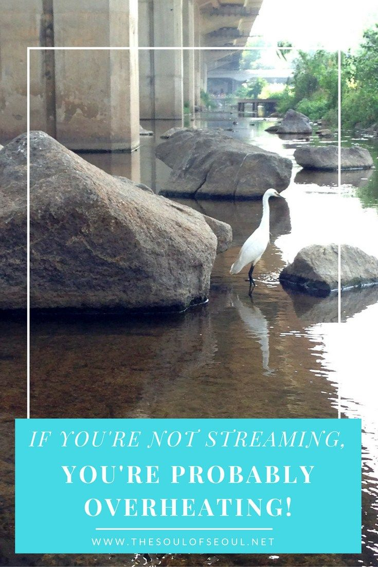 Seoul, Korea: If You're Not Streaming, You're Probably Overheating! Pools are fun and great places to visit in the heat of the summer, but many Korean locals spend most of their time along the banks of the numerous streams that go through the city. Check out where to go and what to see in Seoul when it's hot.