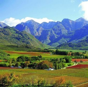 Beautiful country in the Cape