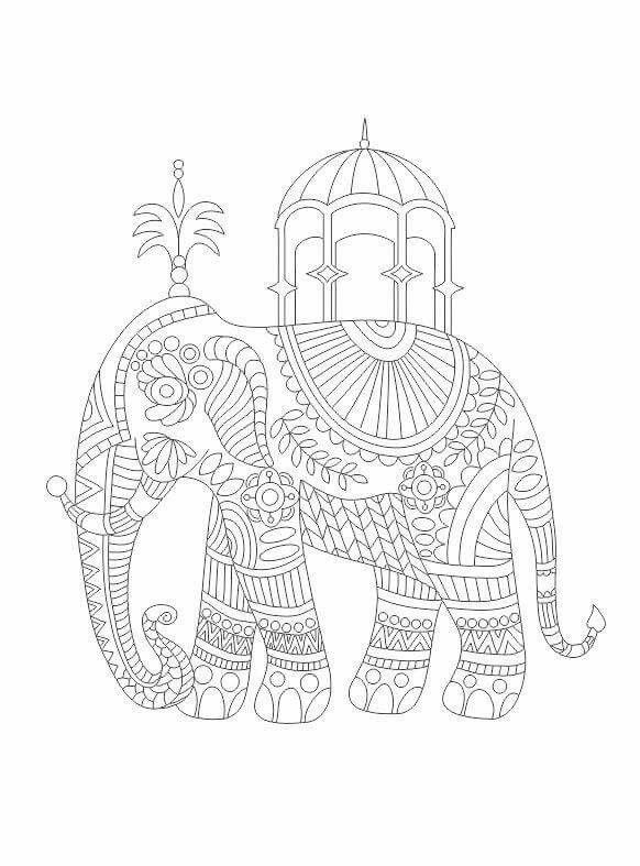Advanced Coloring Pages Elephant : Best images about coloring pages on pinterest