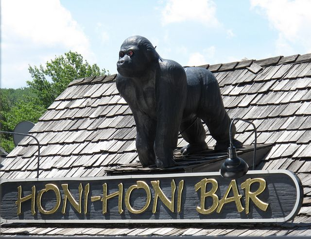 Honi-Honi Bar, Deep Creek Lake, Maryland. Where good times roll!!! Bring the Monkey Milk!! BTW... That is a drink...