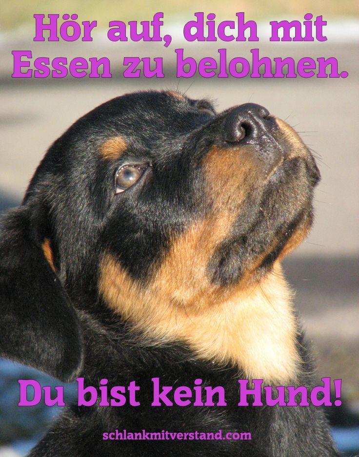 """Top Motivation Bilder und Sprüche zum Abnehmen""""Hör auf, dich mit Essen zu belohnen!"""""""