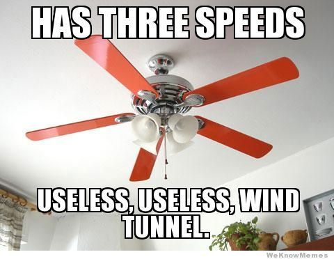 60 Best Ceiling Fan Comedy Images On Pinterest Funny