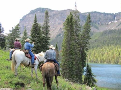 44 Best Horses Trail Riding Images On Pinterest Trail