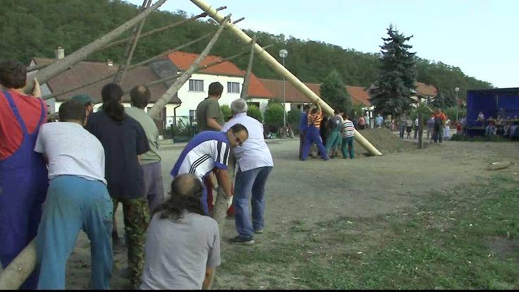 Raising a Czech maypole Ruční stavění máje