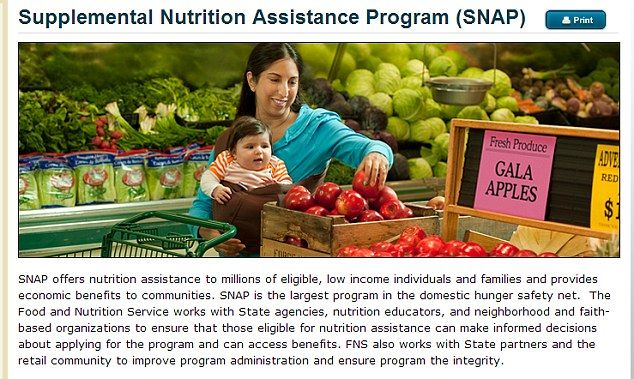 Shocking US government leaflet tells Mexican immigrants they can collect food stamp benefits without admitting they're in the country illegally