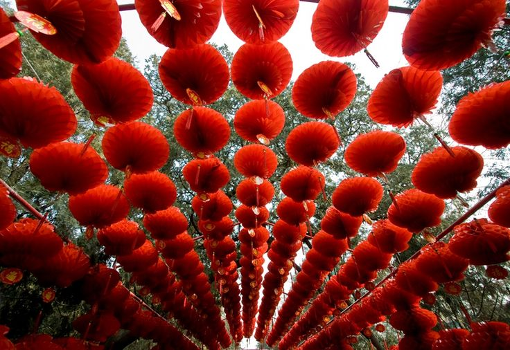 Chinese Lunar New Year - Lanterns in Beijing, China's Ditan Park in 2009