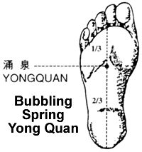 Rooting, Stabilizing, Grounding, Balancing, and Centering in Qigong (Chi Kung) and T'ai Chi Ch'uan (Taijiquan) by Michael Garofalo >> Big Tree School of Natural Healing