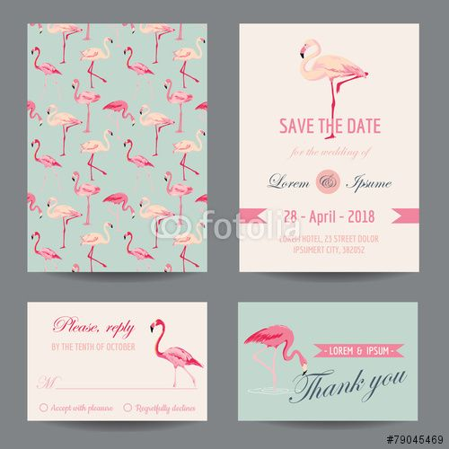 Vecteur : Invitation-Congratulation Card Set - Flamingo Theme - in vector