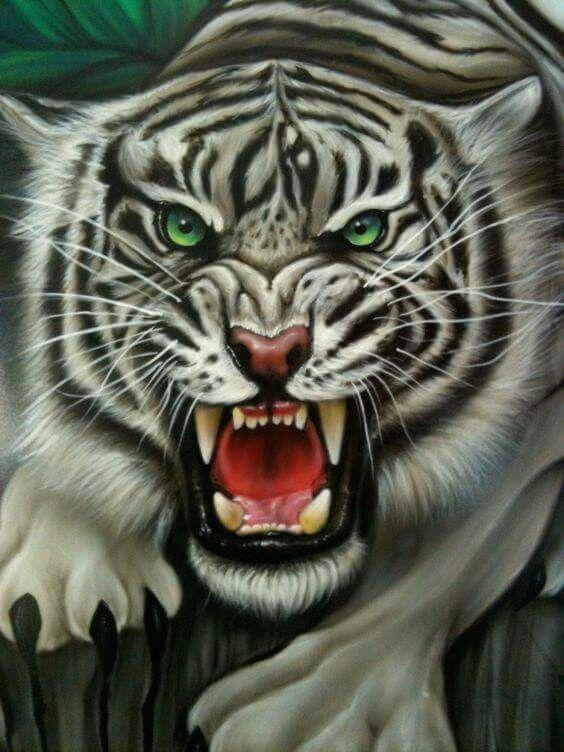 Cat Big Tattoo Drawing